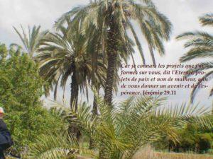 Paix avec Dieu, paix entre les hommes, sans compromission ni exclusion